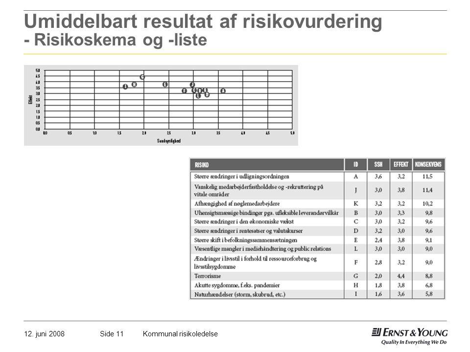 Umiddelbart resultat af risikovurdering - Risikoskema og -liste