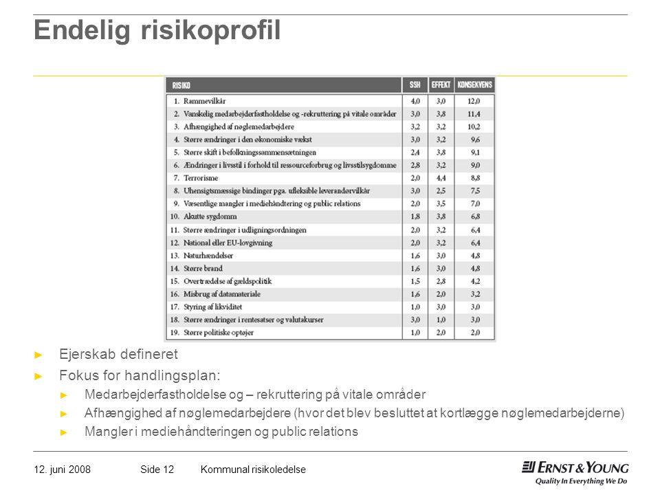 Endelig risikoprofil Ejerskab defineret Fokus for handlingsplan: