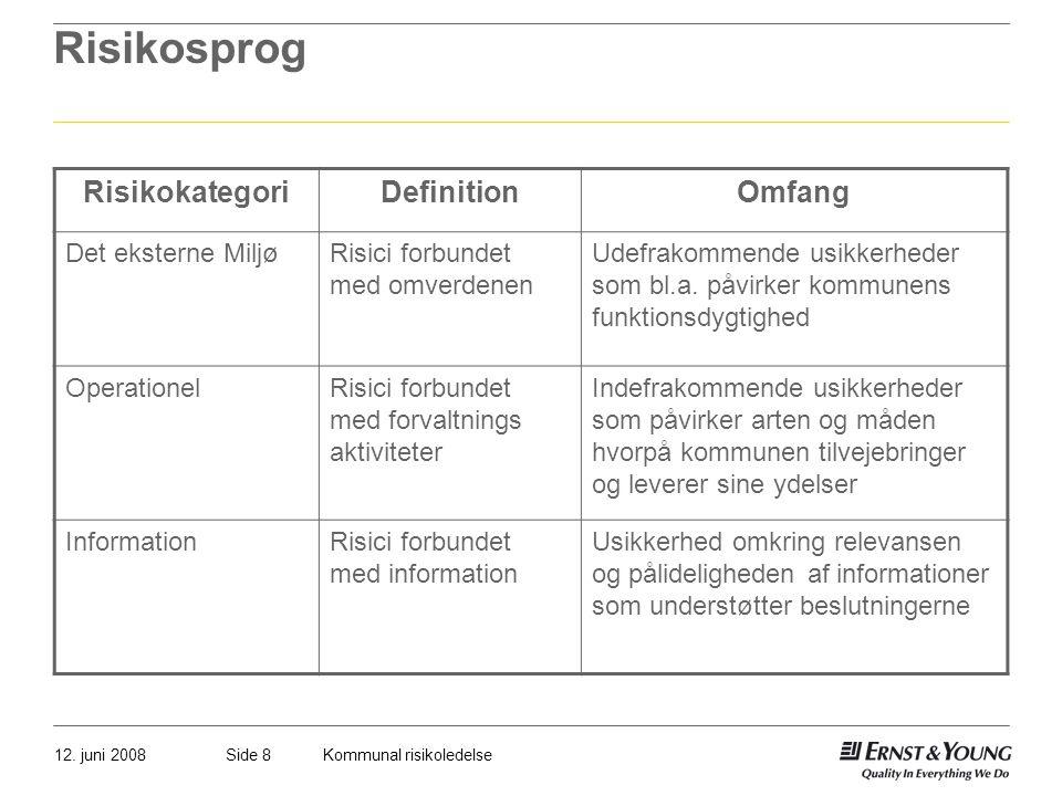 Risikosprog Risikokategori Definition Omfang Det eksterne Miljø