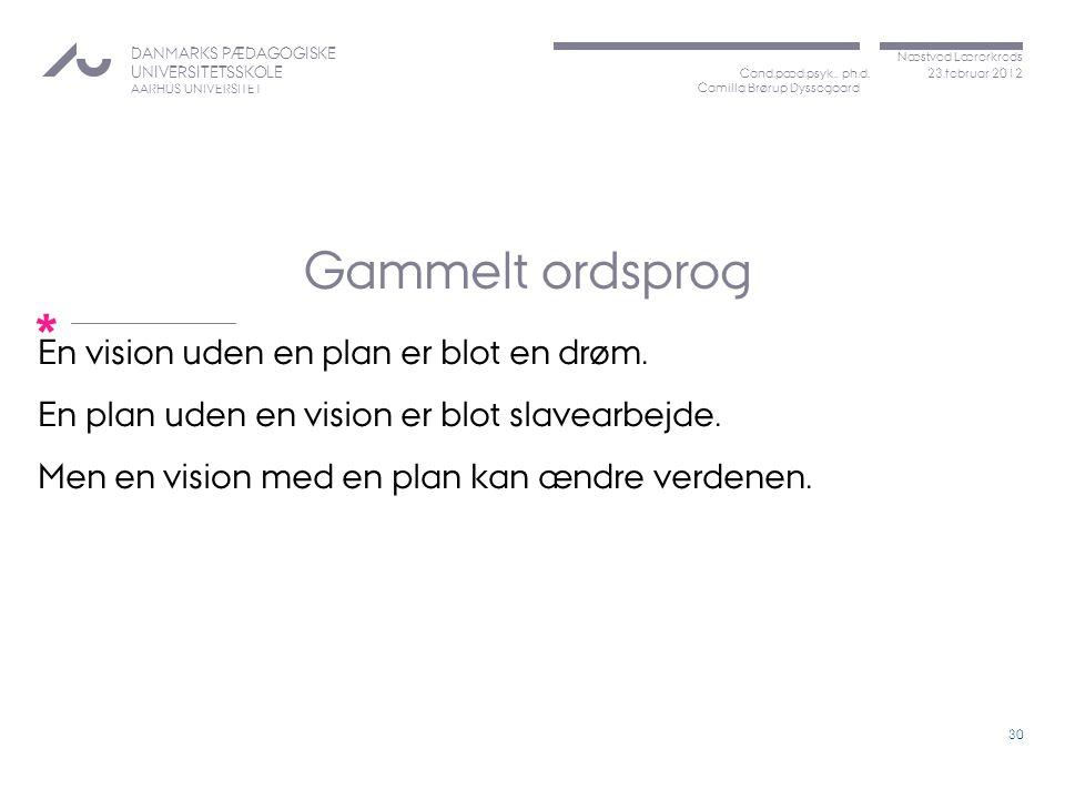 Gammelt ordsprog En vision uden en plan er blot en drøm.