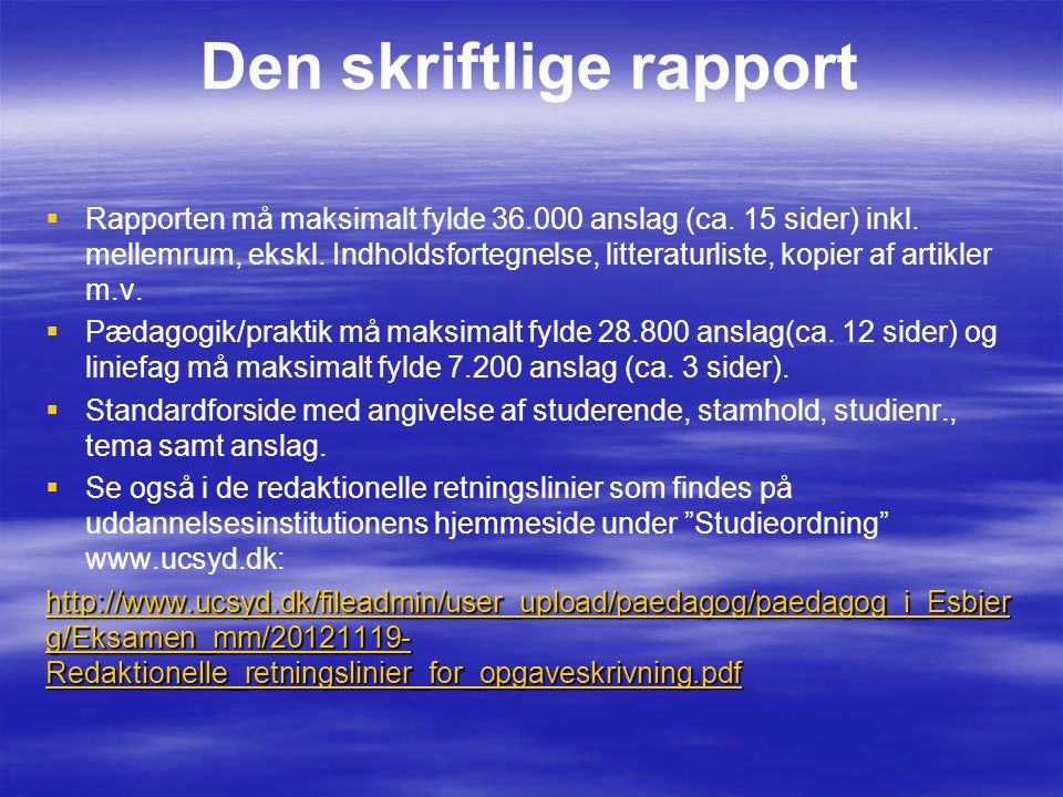 Den skriftlige rapport