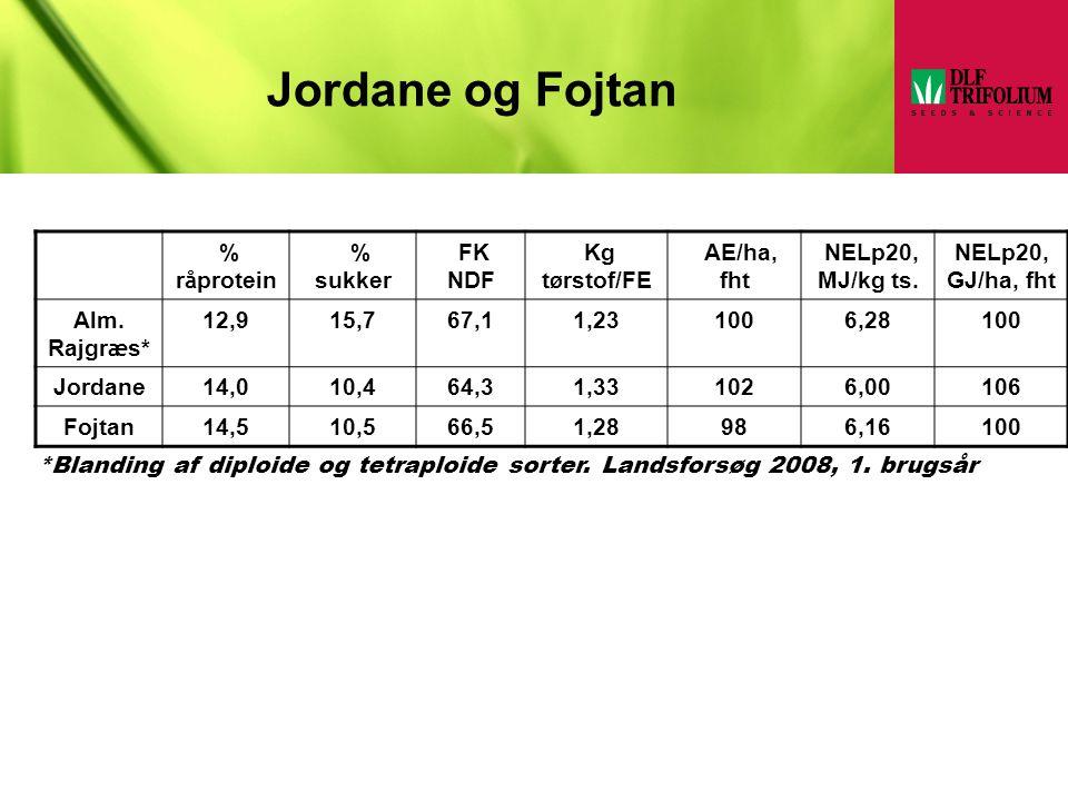 Jordane og Fojtan % råprotein % sukker FK NDF Kg tørstof/FE AE/ha, fht