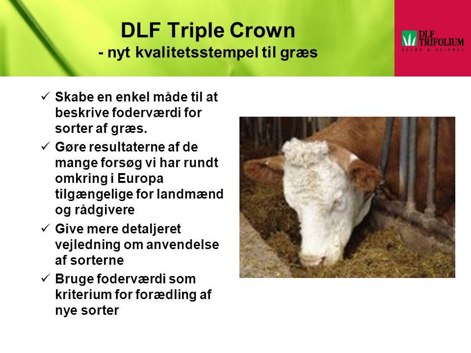 DLF Triple Crown - nyt kvalitetsstempel til græs
