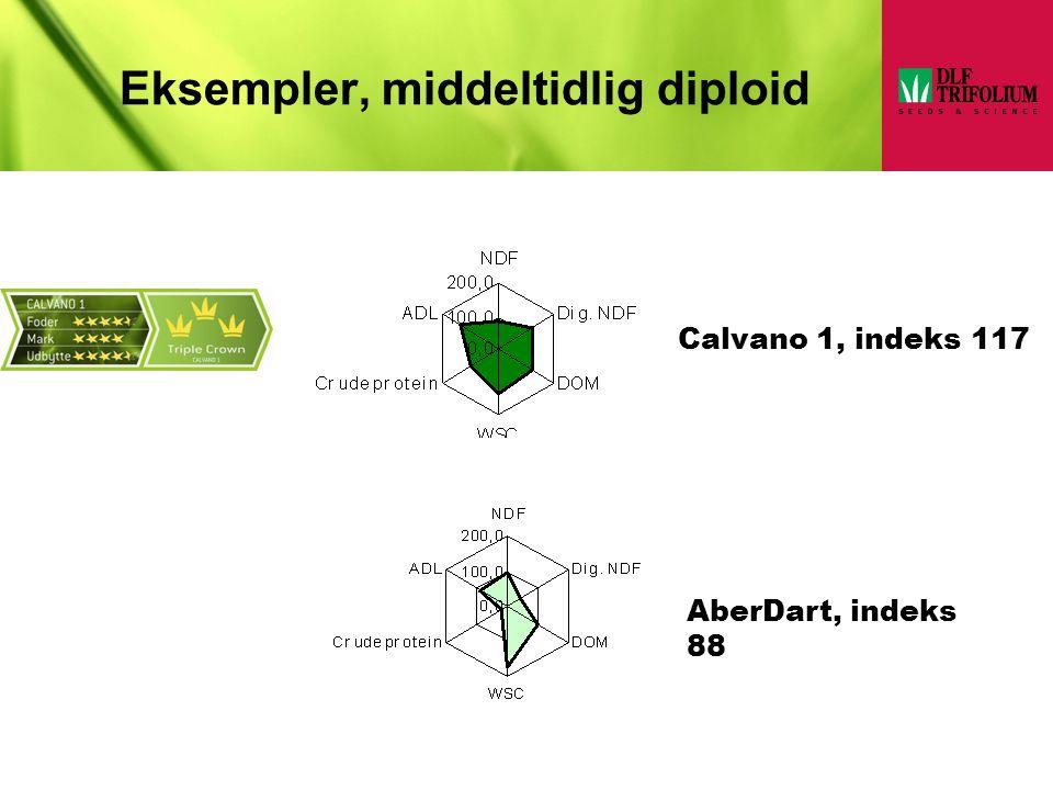 Eksempler, middeltidlig diploid
