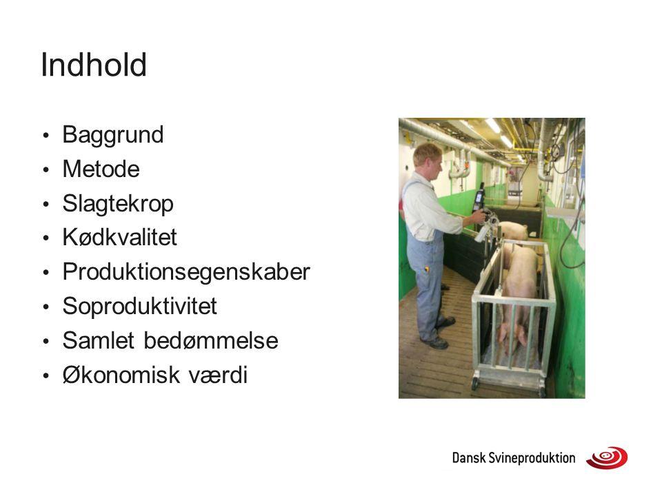 Indhold Baggrund Metode Slagtekrop Kødkvalitet Produktionsegenskaber