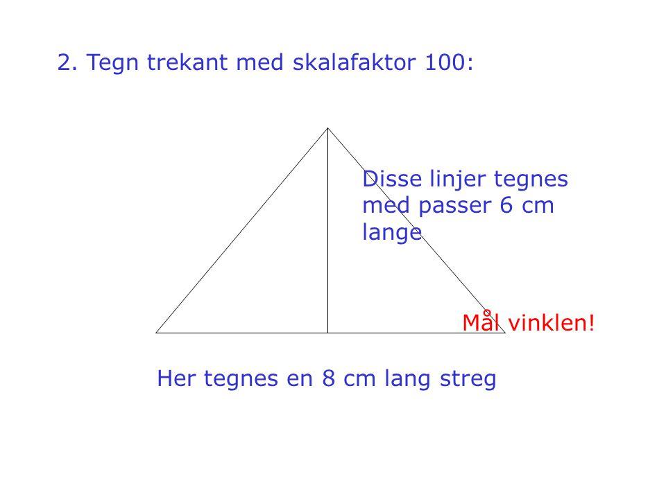 2. Tegn trekant med skalafaktor 100: