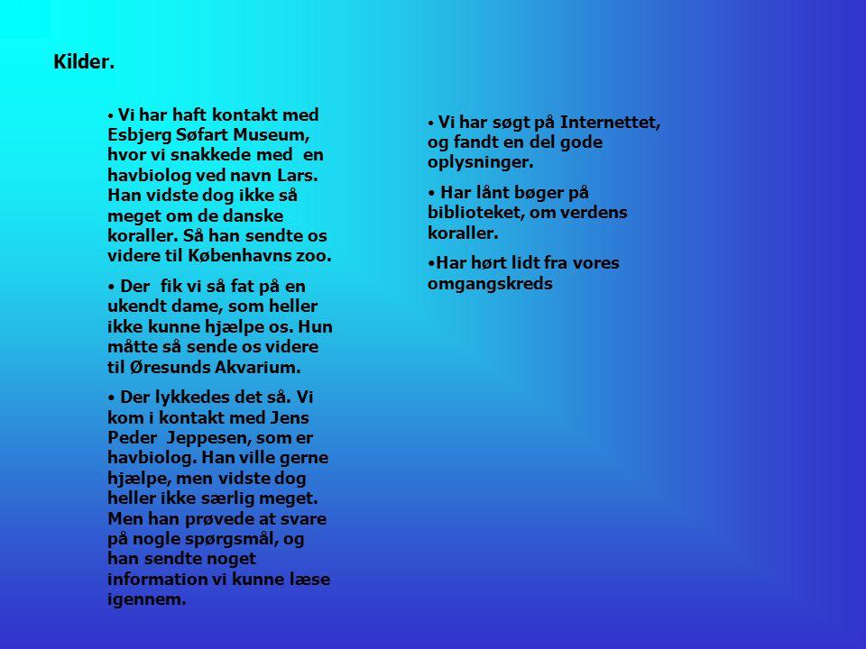 esbjerg bibliotek bøde