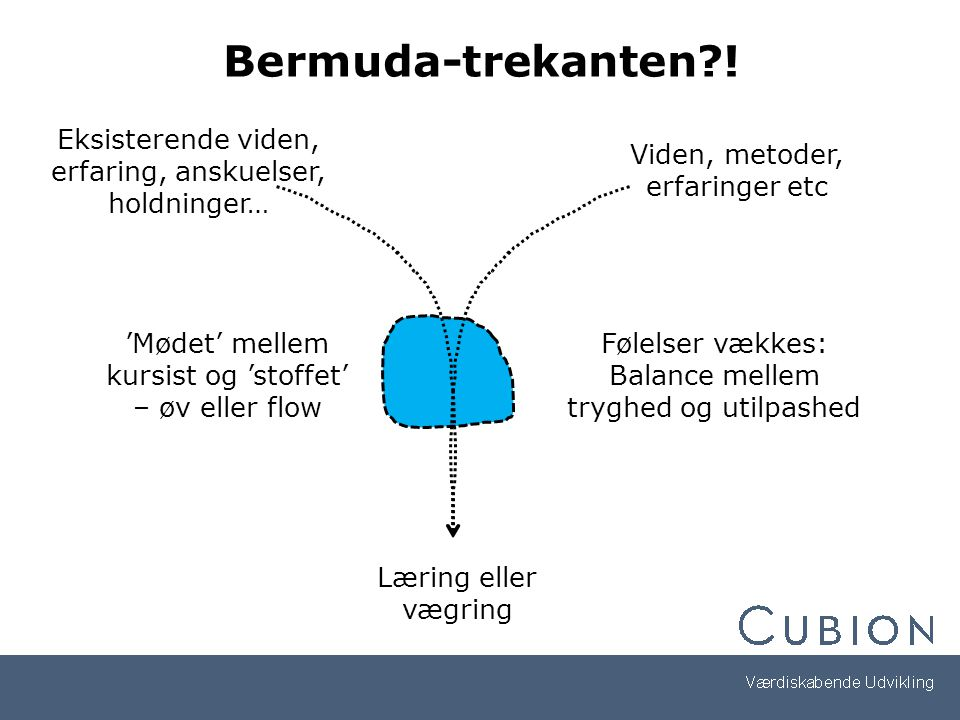 Bermuda-trekanten ! Eksisterende viden, erfaring, anskuelser, holdninger… Viden, metoder, erfaringer etc.