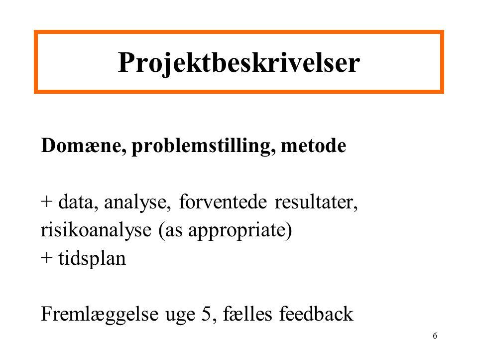 Projektbeskrivelser Domæne, problemstilling, metode