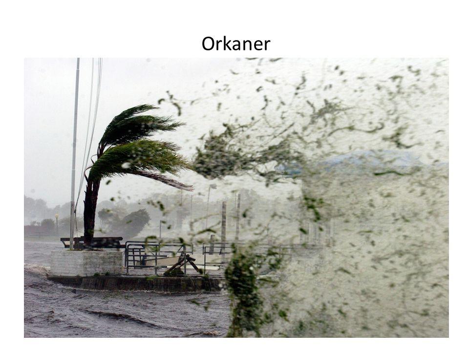 Orkaner