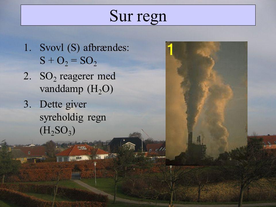 Sur regn Svovl (S) afbrændes: S + O2 = SO2
