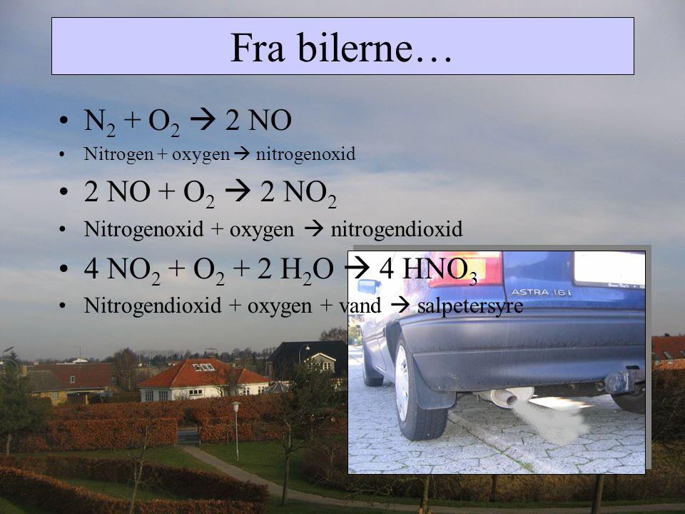 Fra bilerne… N2 + O2  2 NO 2 NO + O2  2 NO2
