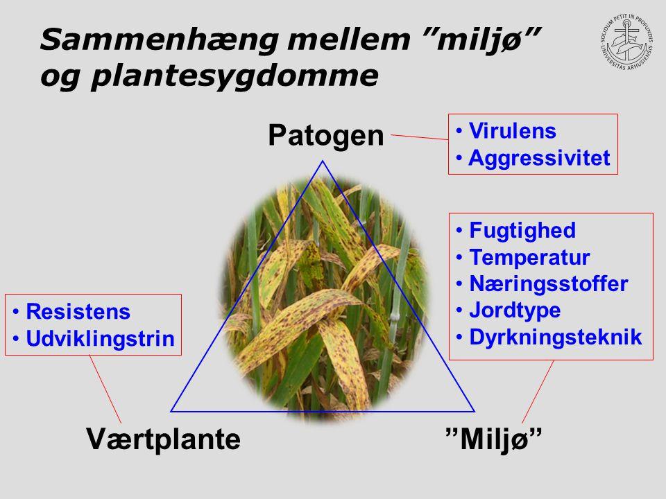 Sammenhæng mellem miljø og plantesygdomme