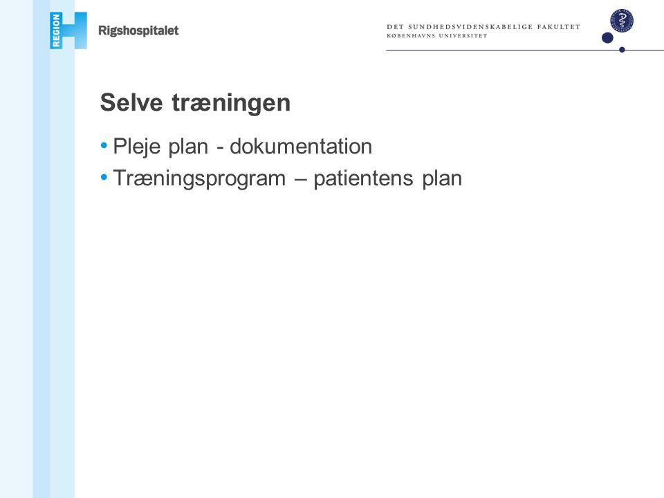 Selve træningen Pleje plan - dokumentation