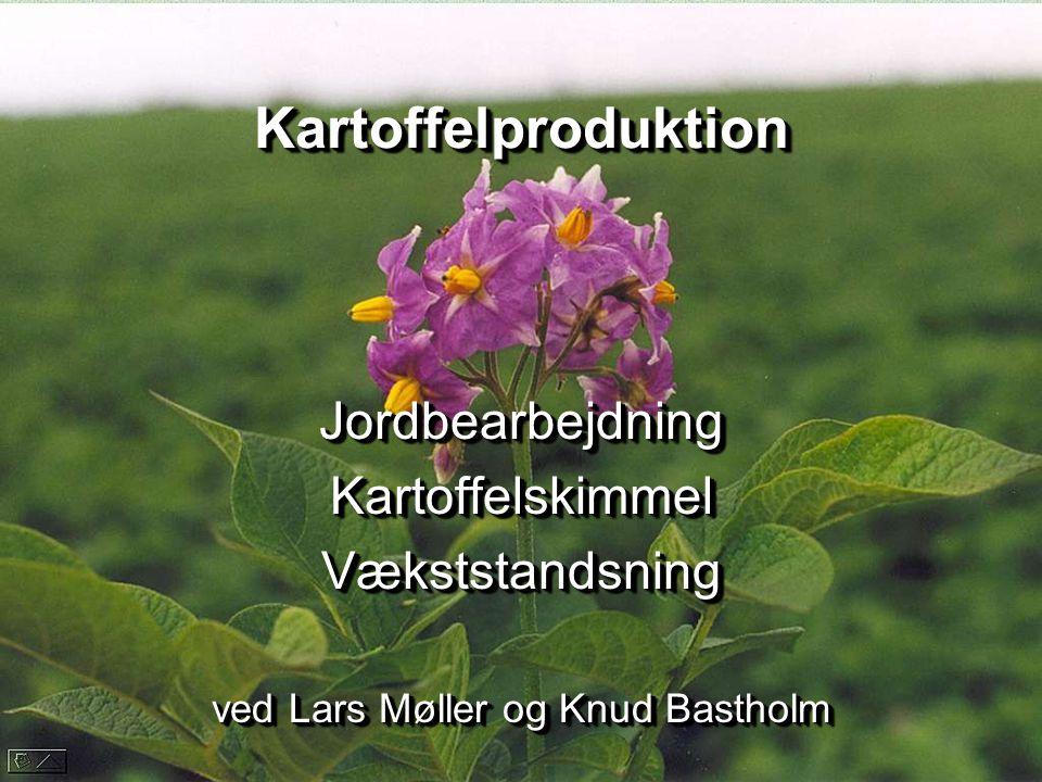 Jordbearbejdning Kartoffelskimmel Vækststandsning