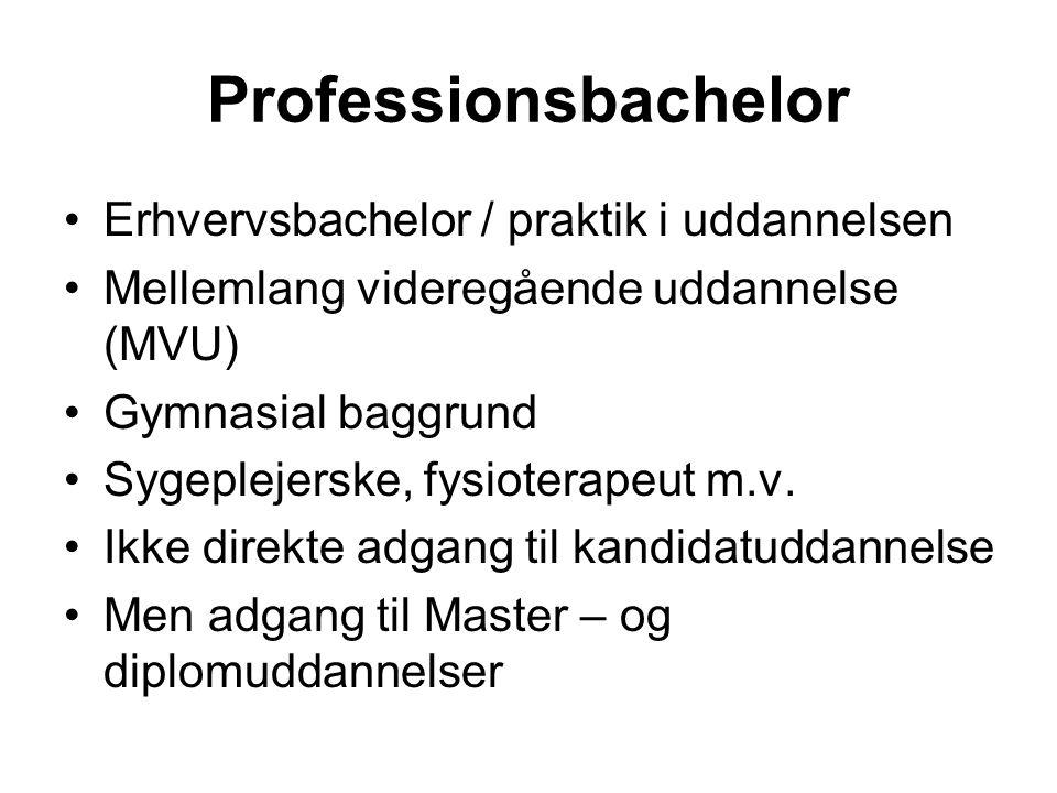 Professionsbachelor Erhvervsbachelor / praktik i uddannelsen