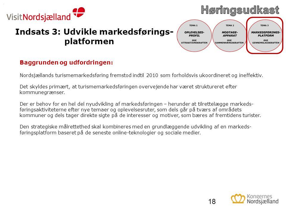 Indsats 3: Udvikle markedsførings- platformen