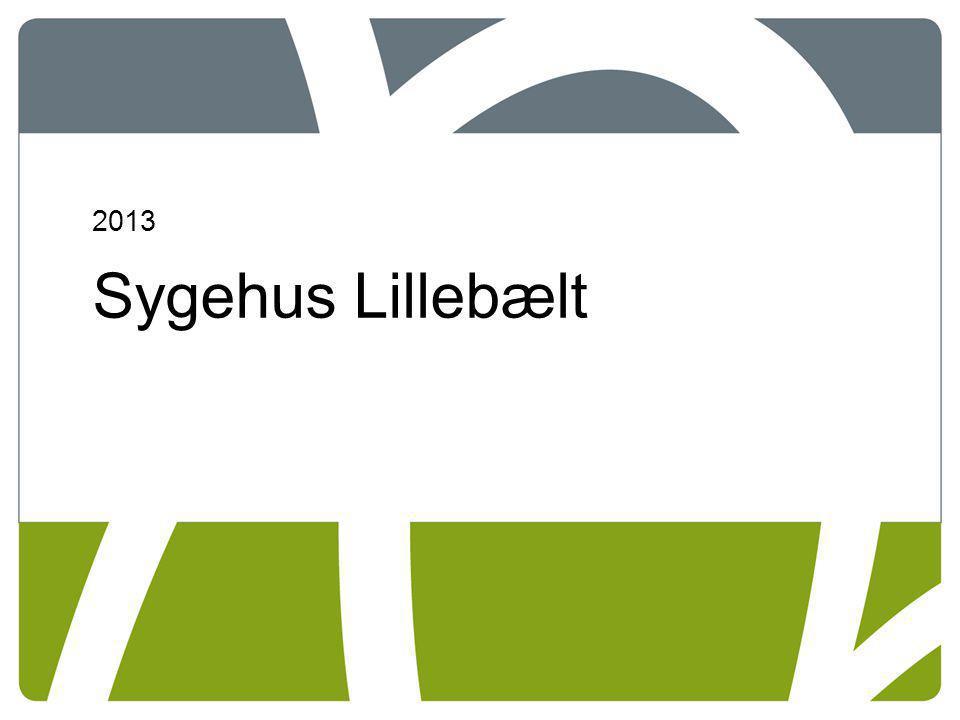 2013 Sygehus Lillebælt 07-04-2017