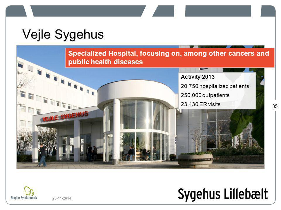 Vejle Sygehus Specialized Hospital, focusing on, among other cancers and public health diseases. Activity 2013.