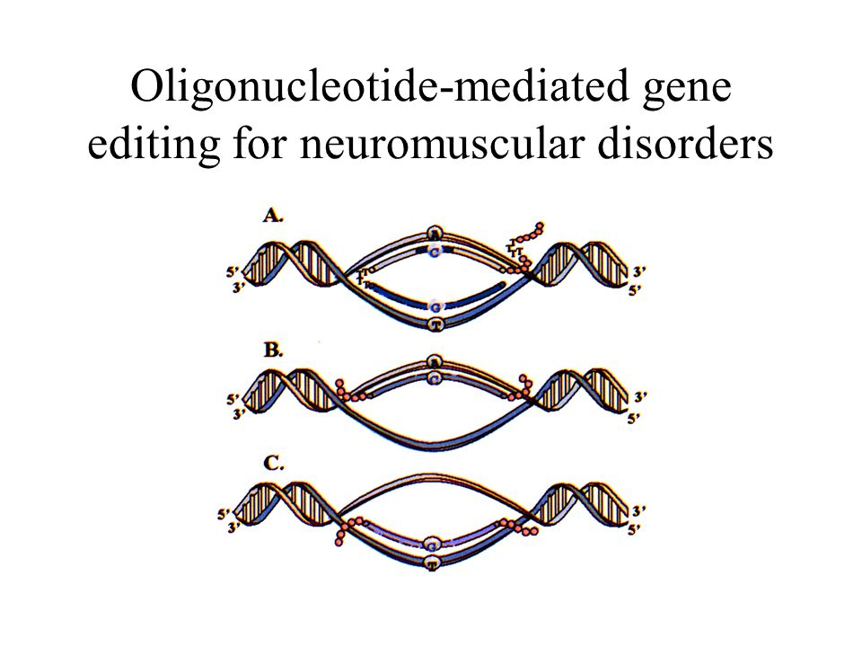 Oligonucleotide-mediated gene editing for neuromuscular disorders