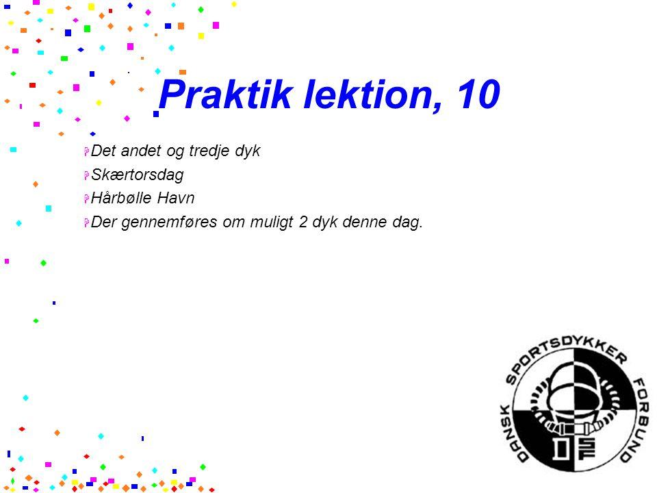 Praktik lektion, 10 Det andet og tredje dyk Skærtorsdag Hårbølle Havn