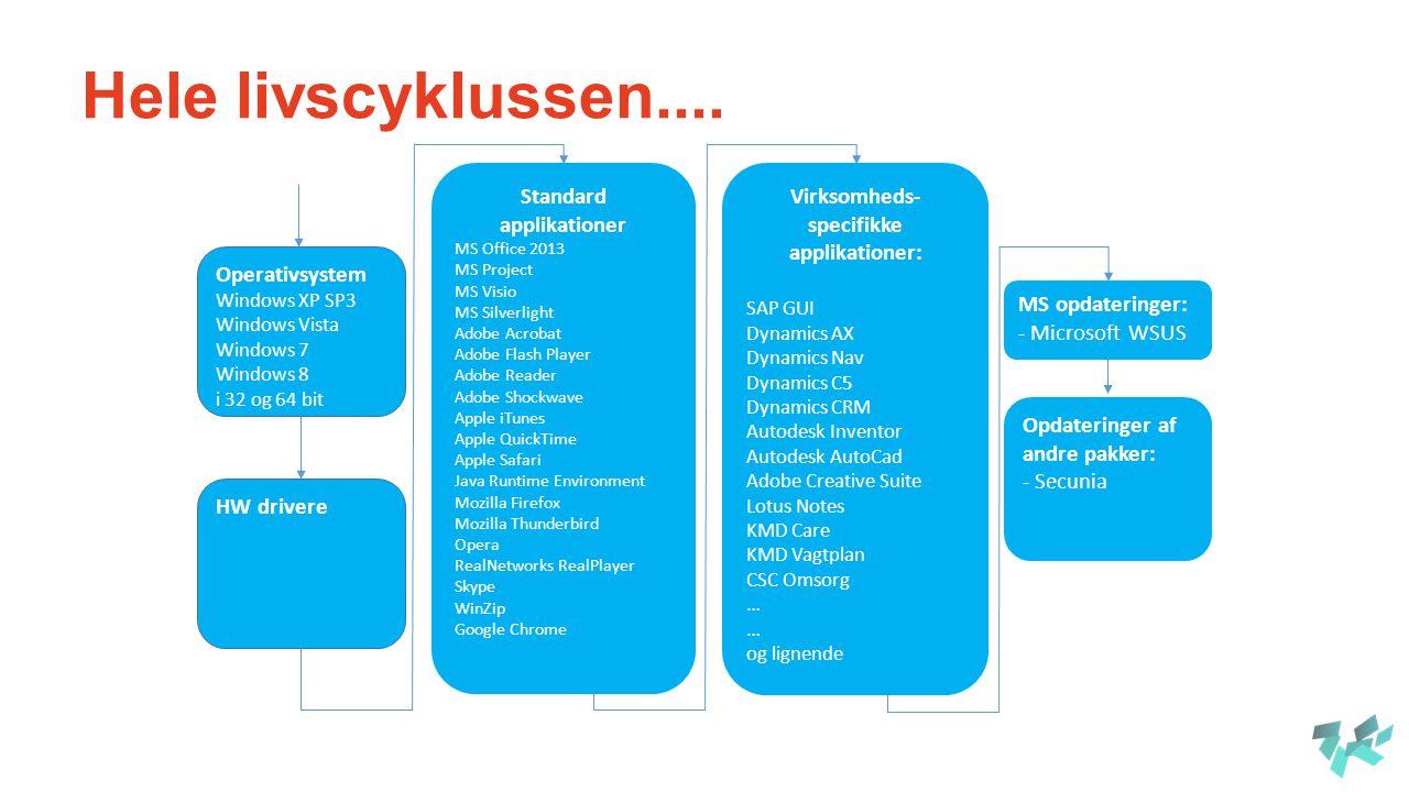Virksomheds-specifikke applikationer: