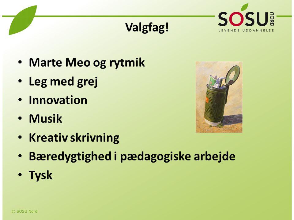 Valgfag! Marte Meo og rytmik. Leg med grej. Innovation. Musik. Kreativ skrivning. Bæredygtighed i pædagogiske arbejde.