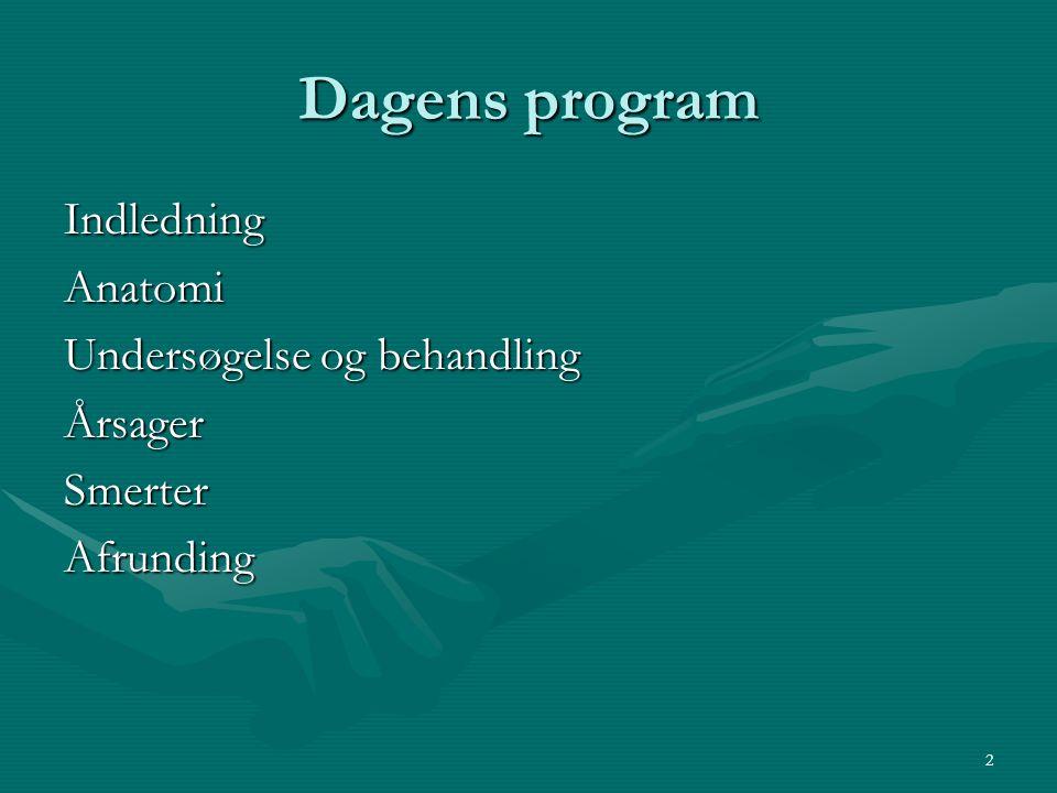 Dagens program Indledning Anatomi Undersøgelse og behandling Årsager