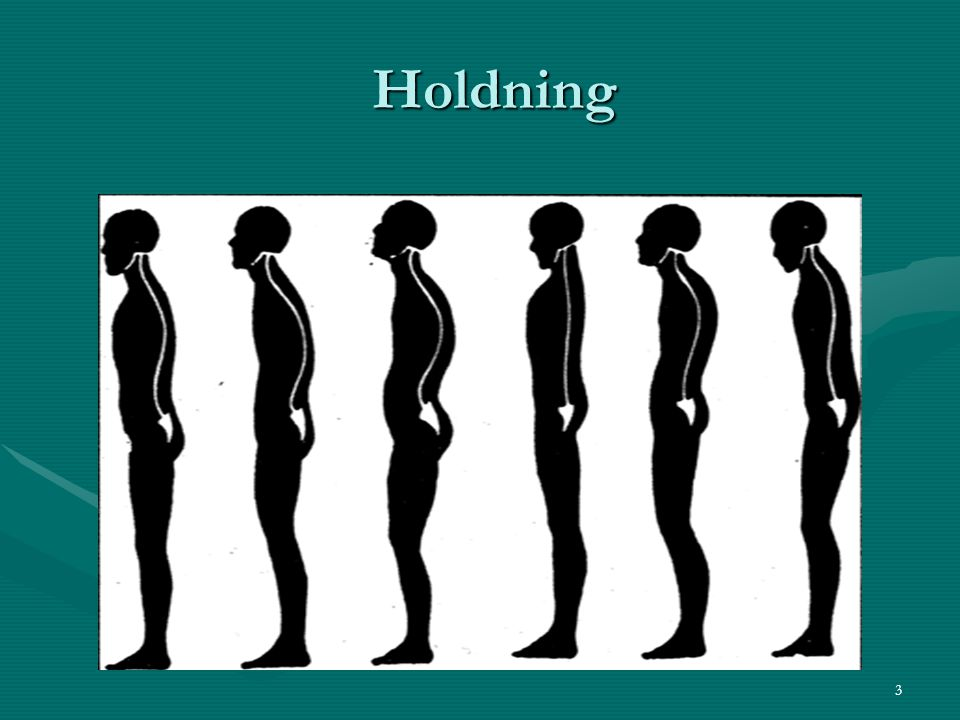 Holdning