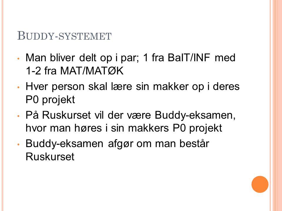 Buddy-systemet Man bliver delt op i par; 1 fra BaIT/INF med 1-2 fra MAT/MATØK. Hver person skal lære sin makker op i deres P0 projekt.