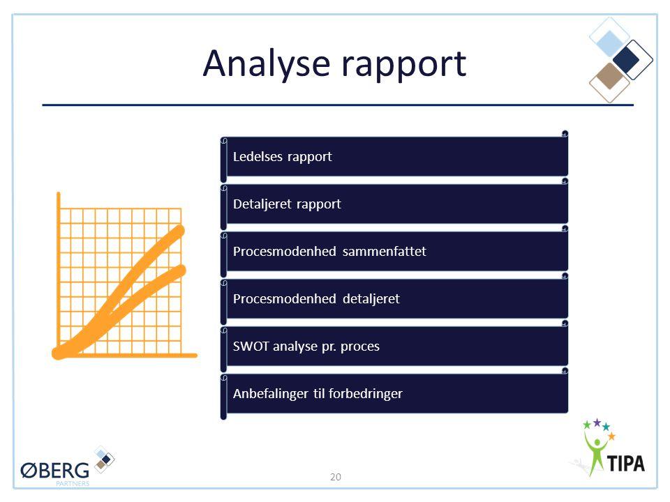 Analyse rapport Ledelses rapport Detaljeret rapport