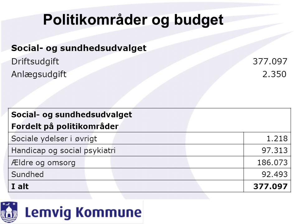 Politikområder og budget