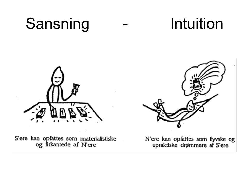Sansning - Intuition S'ere har styr på detaljen.