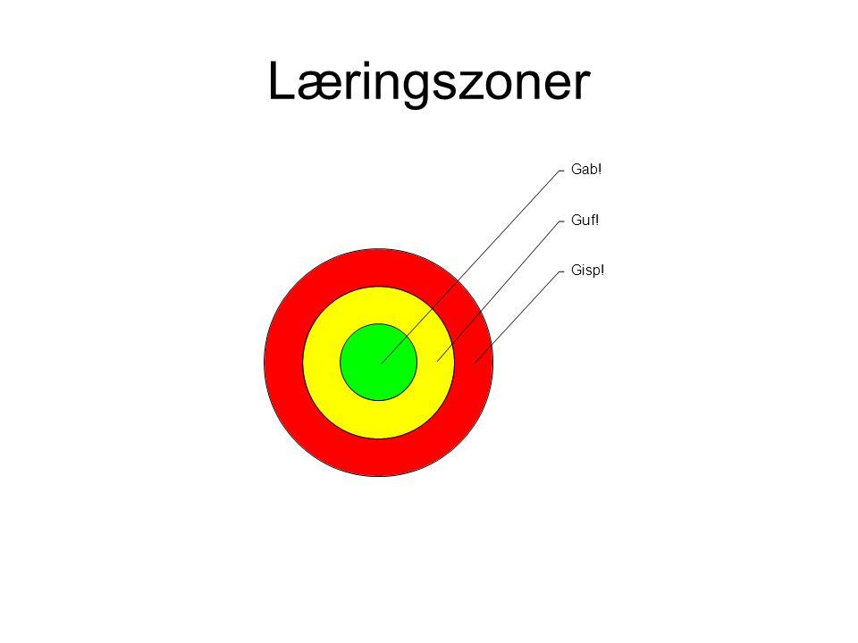 Læringszoner Hvad er brugerens komfortzone – hvad ved han i forvejen