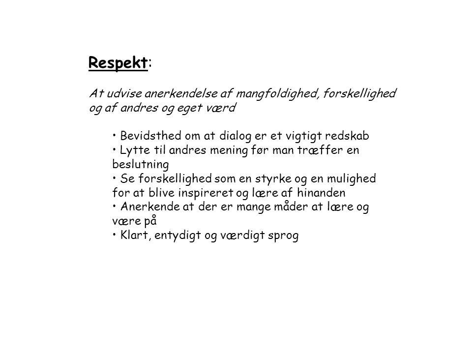 Respekt: At udvise anerkendelse af mangfoldighed, forskellighed og af andres og eget værd. Bevidsthed om at dialog er et vigtigt redskab.