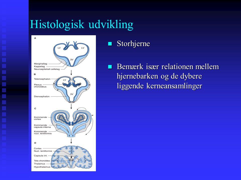 Histologisk udvikling