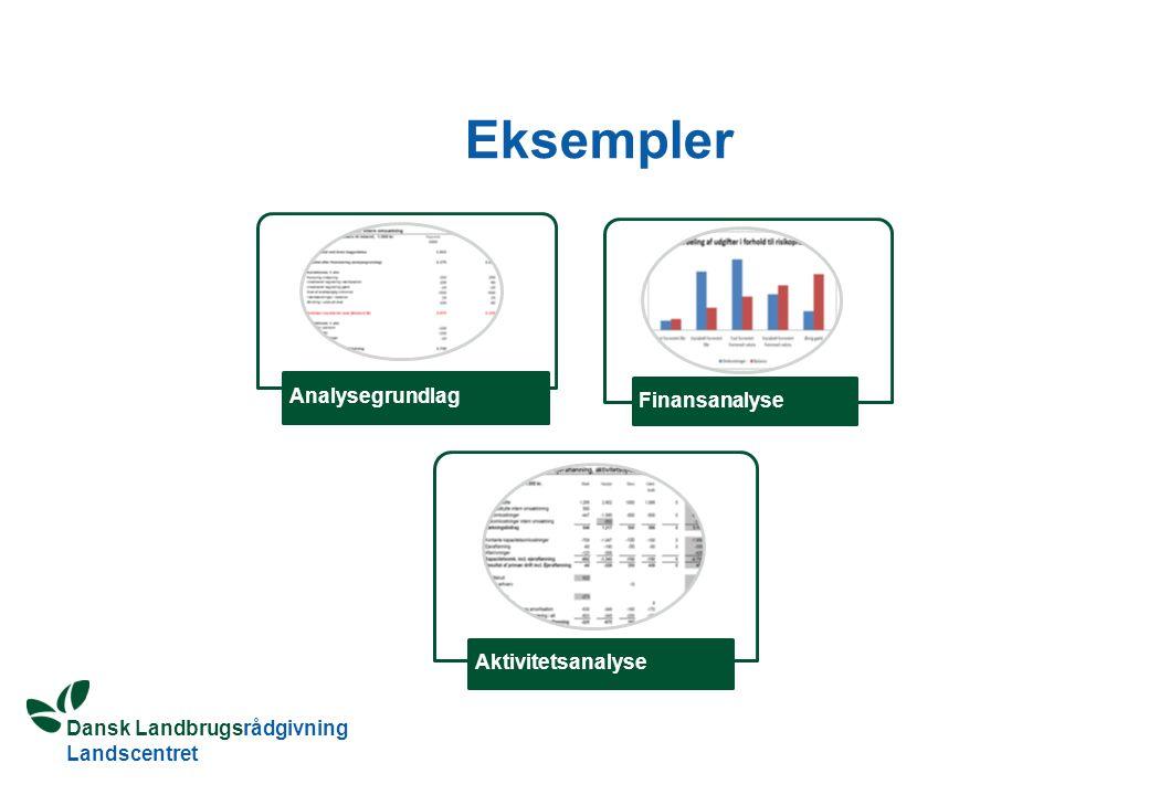 Eksempler Analysegrundlag Finansanalyse Aktivitetsanalyse