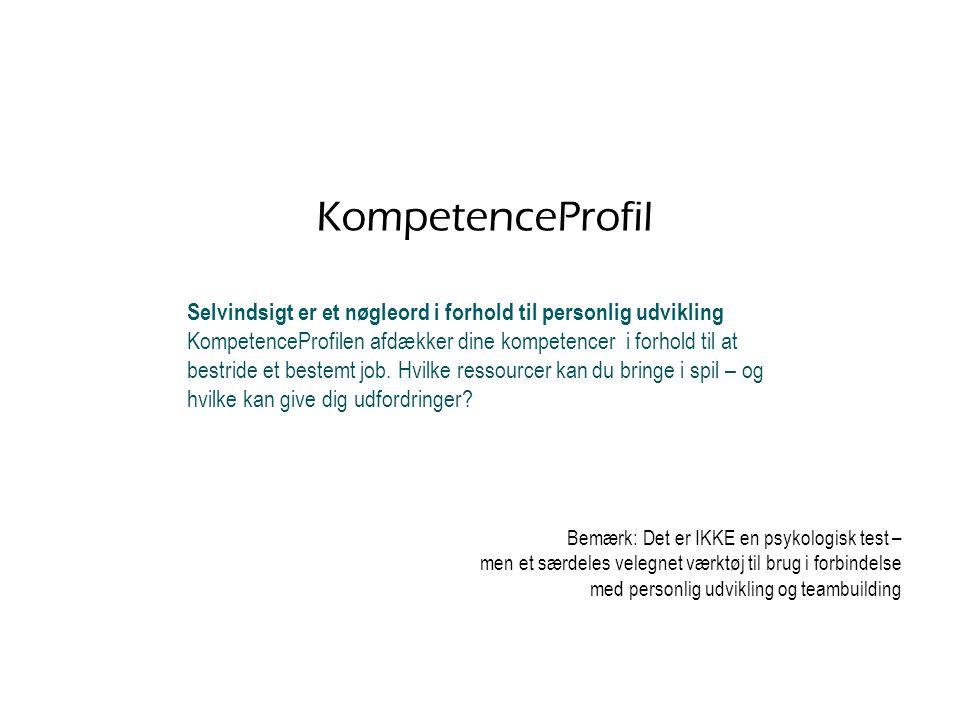 KompetenceProfil Selvindsigt er et nøgleord i forhold til personlig udvikling.