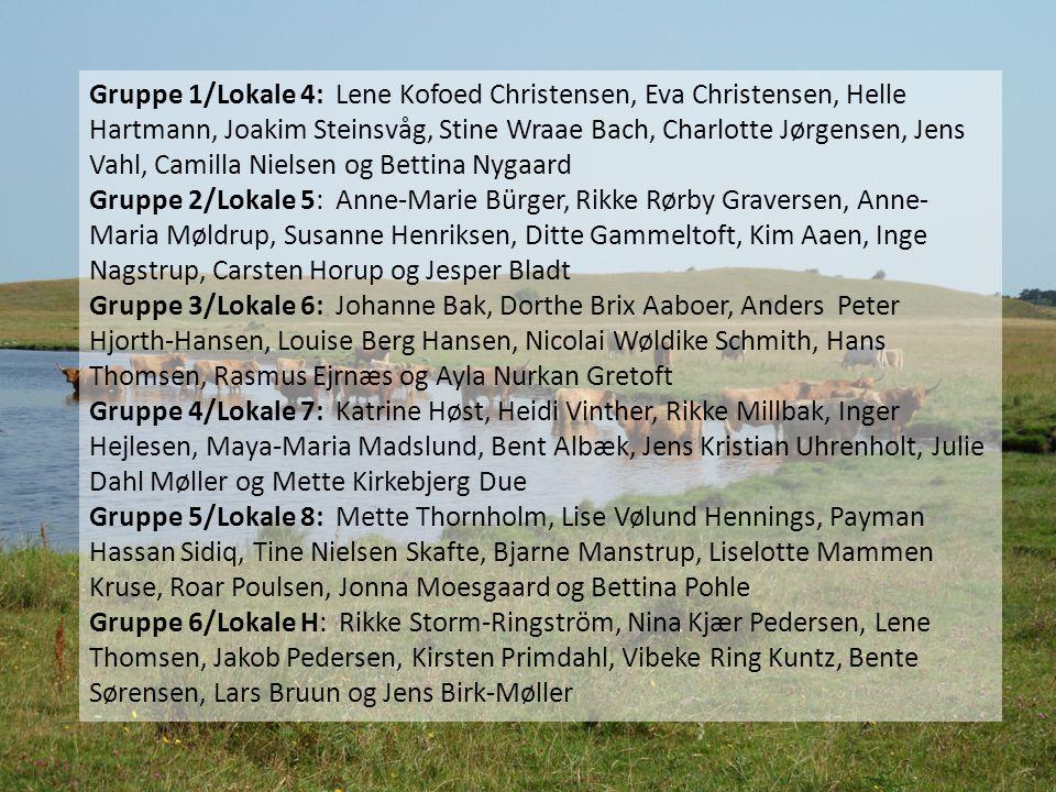 Gruppe 1/Lokale 4: Lene Kofoed Christensen, Eva Christensen, Helle Hartmann, Joakim Steinsvåg, Stine Wraae Bach, Charlotte Jørgensen, Jens Vahl, Camilla Nielsen og Bettina Nygaard