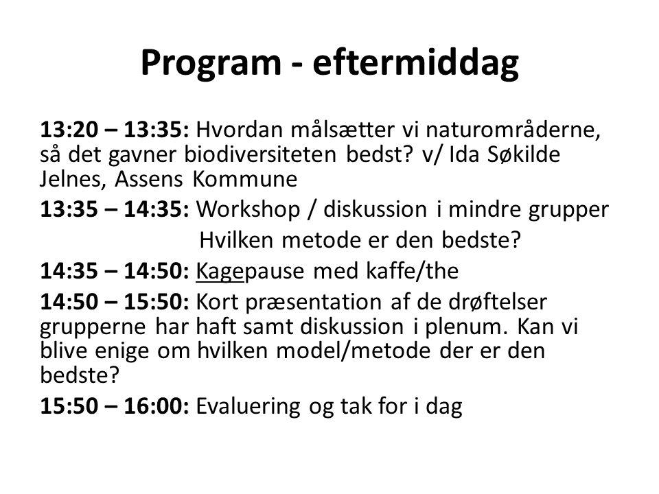 Program - eftermiddag