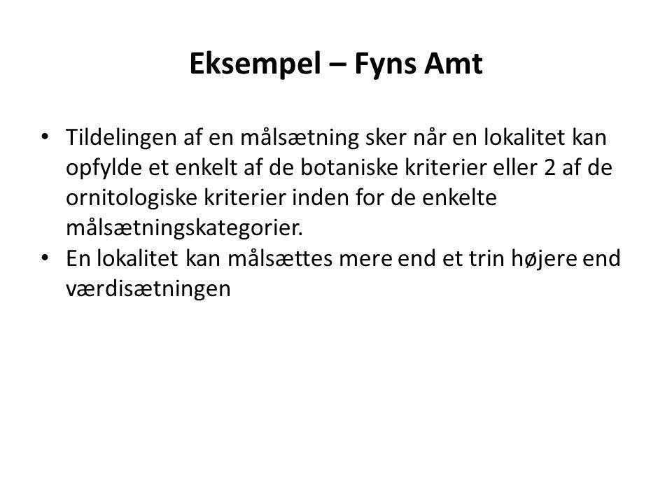Eksempel – Fyns Amt