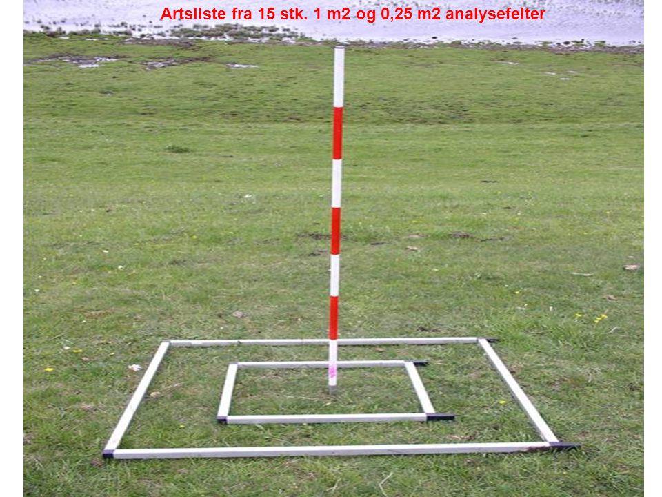 Artsliste fra 15 stk. 1 m2 og 0,25 m2 analysefelter