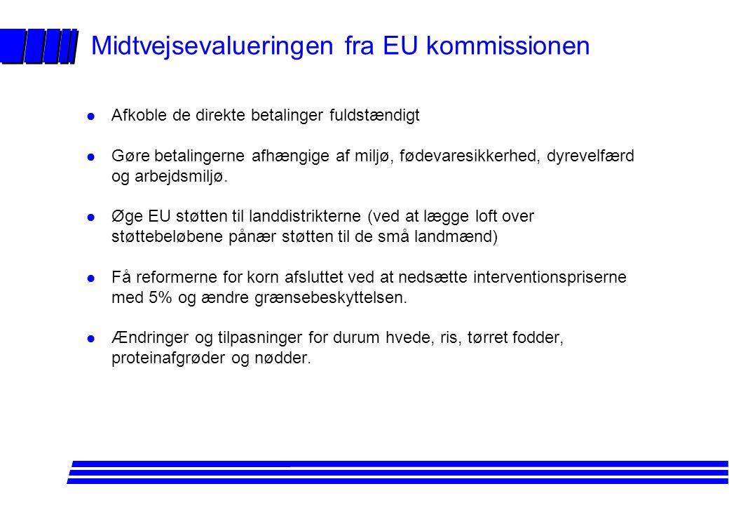 Midtvejsevalueringen fra EU kommissionen