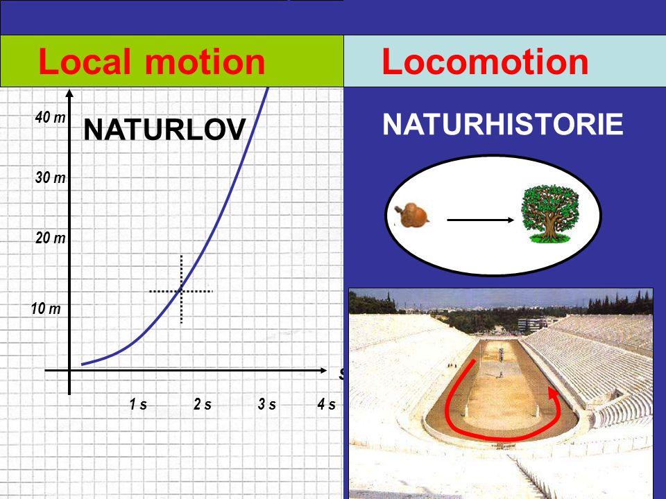 Local motion Locomotion NATURHISTORIE NATURLOV m s 40 m 30 m 20 m 10 m