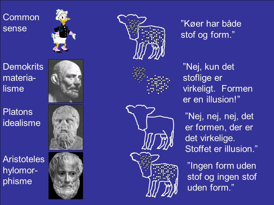Common sense Køer har både stof og form. Demokrits materia-lisme. Nej, kun det stoflige er virkeligt. Formen er en illusion!