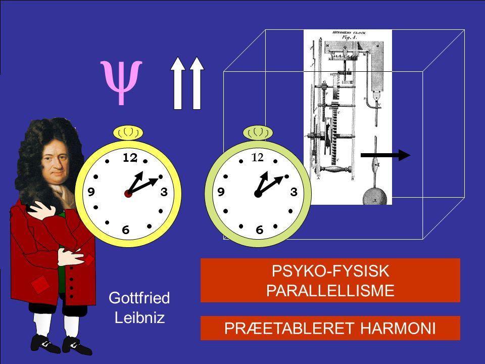 PSYKO-FYSISK PARALLELLISME