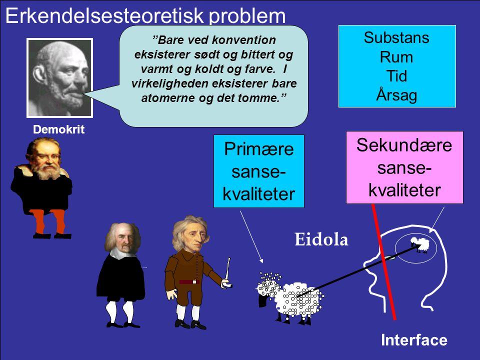 Erkendelsesteoretisk problem