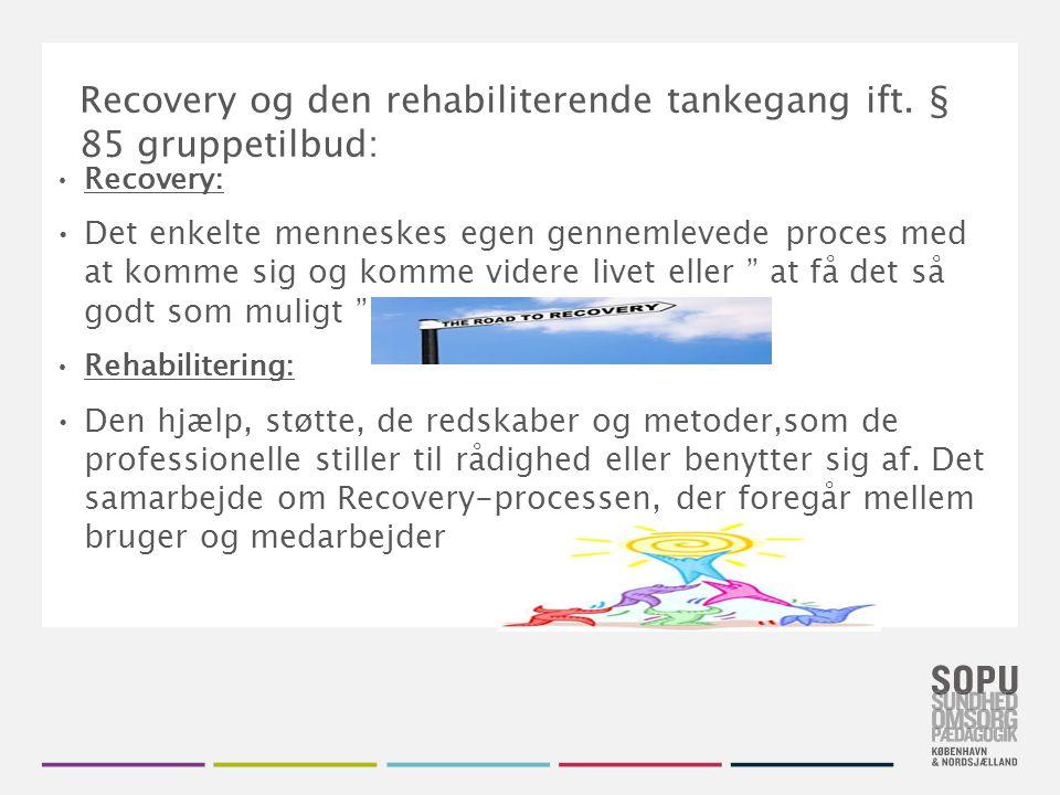Recovery og den rehabiliterende tankegang ift. § 85 gruppetilbud: