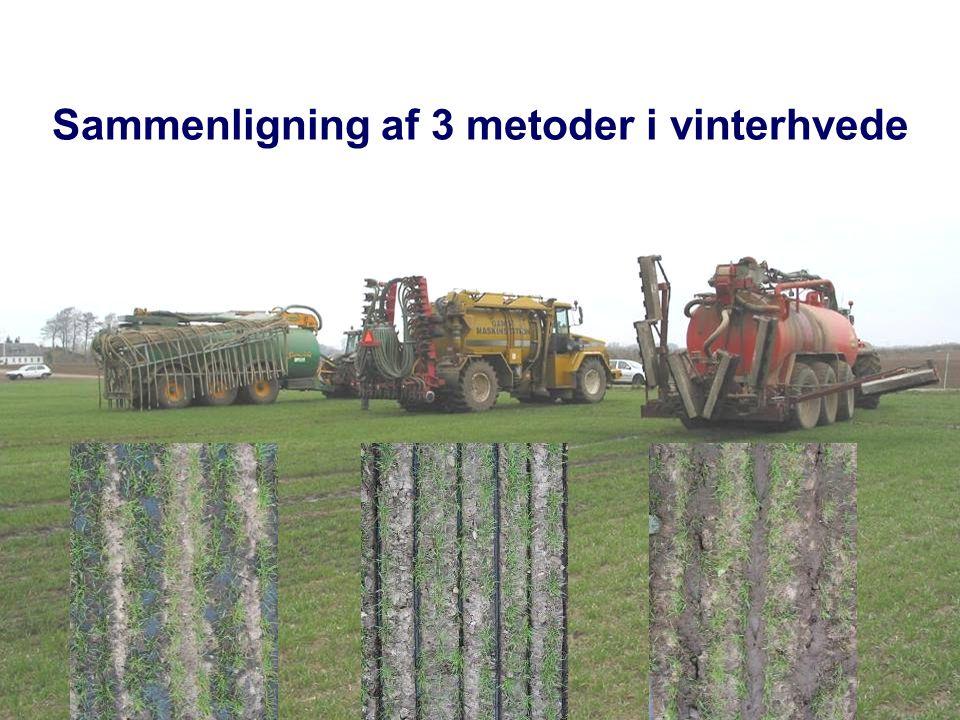 Sammenligning af 3 metoder i vinterhvede