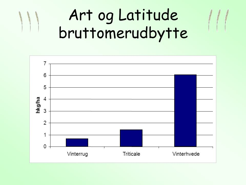 Art og Latitude bruttomerudbytte